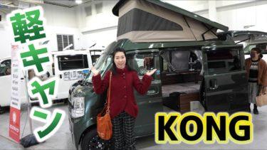 KONG(コング)|FIELDLIFE(フィールドライフ)